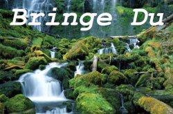 Bringe Du (нем.)